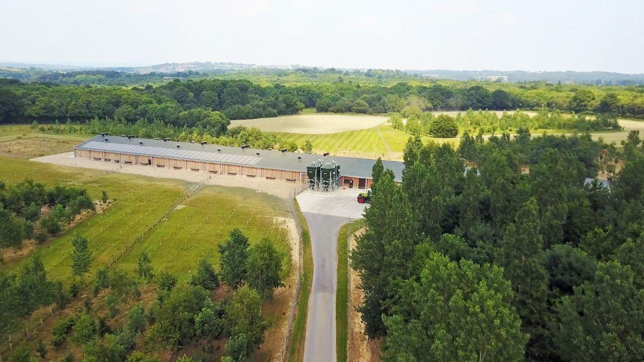 Wealdon Woods Free Range Egg Farm