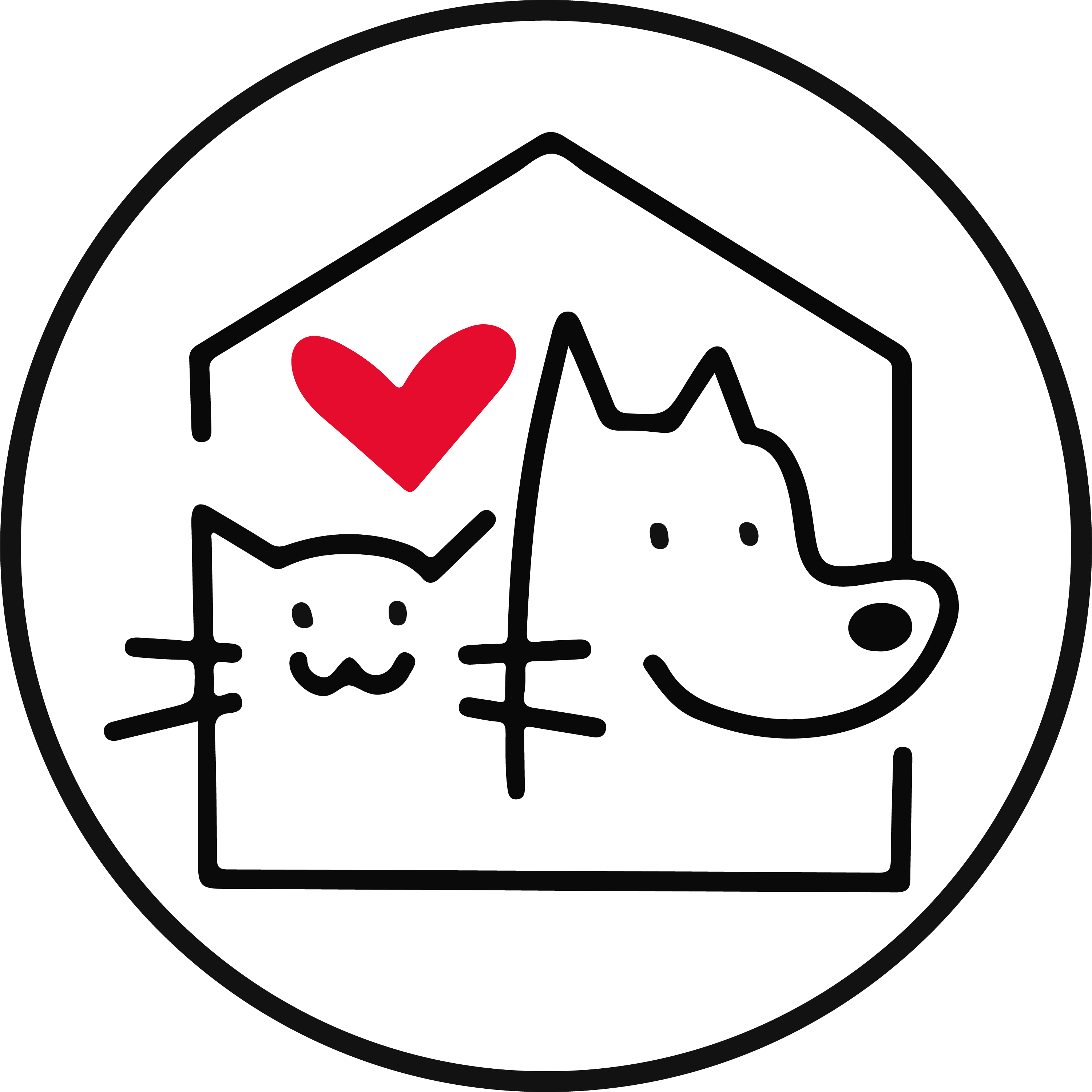 Animal Icon with a cat and dog inside a house