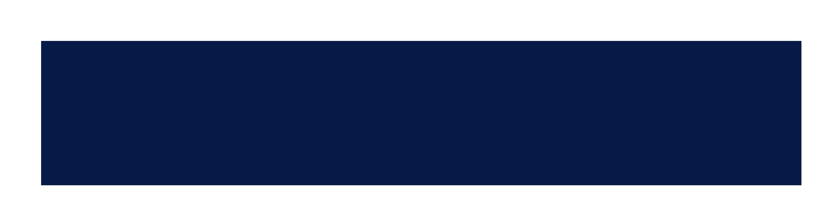 Broadlight Global Logo