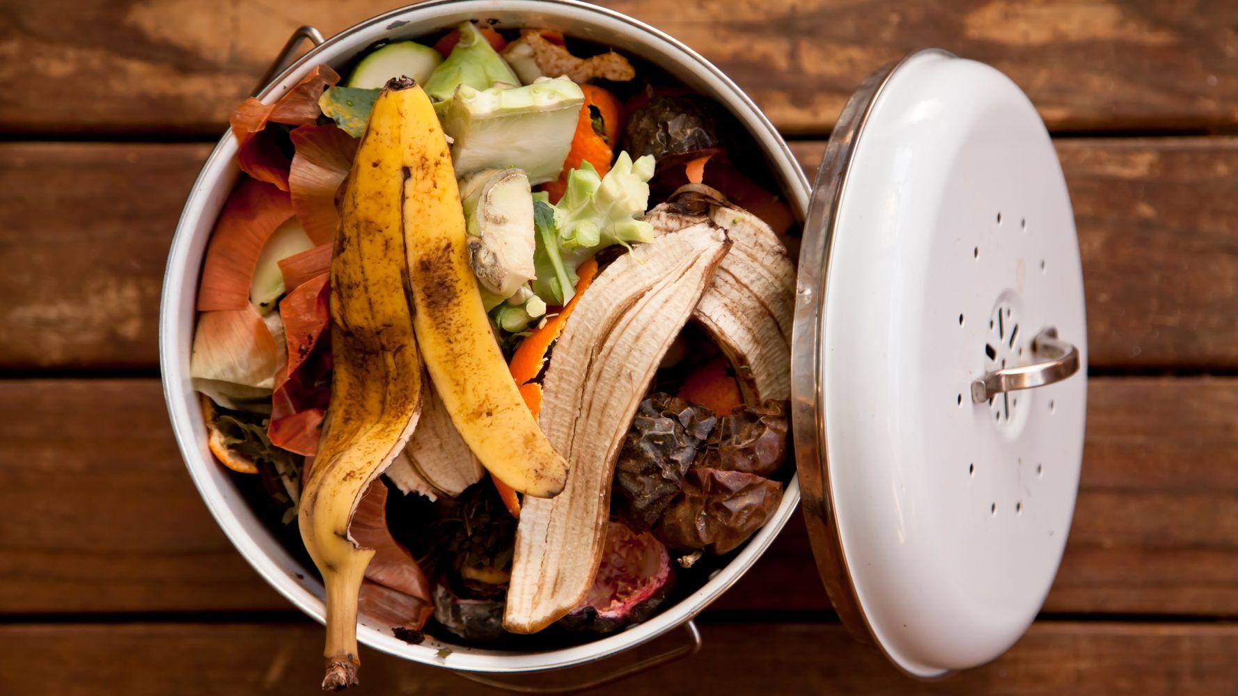 Como o desperdício de alimentos afeta o Brasil e o seu bolso