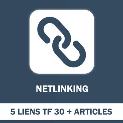 Pack 5 Liens Netlinking (TF min 30) articles 500 mots compris - SEO