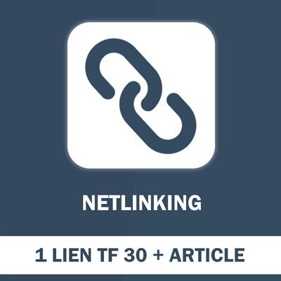 1 Lien Netlinking (TF min 30) article 500 mots compris - SEO