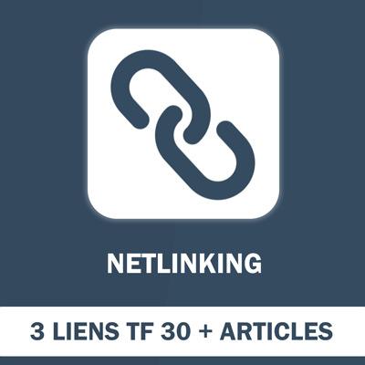 Pack 3 Liens Netlinking (TF min 30) articles 500 mots compris - SEO