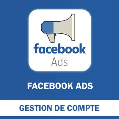 Gestion de Compte Facebook - 30 jours
