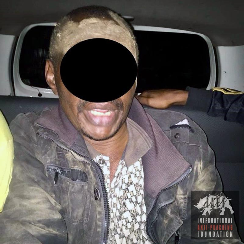Poacher arrested