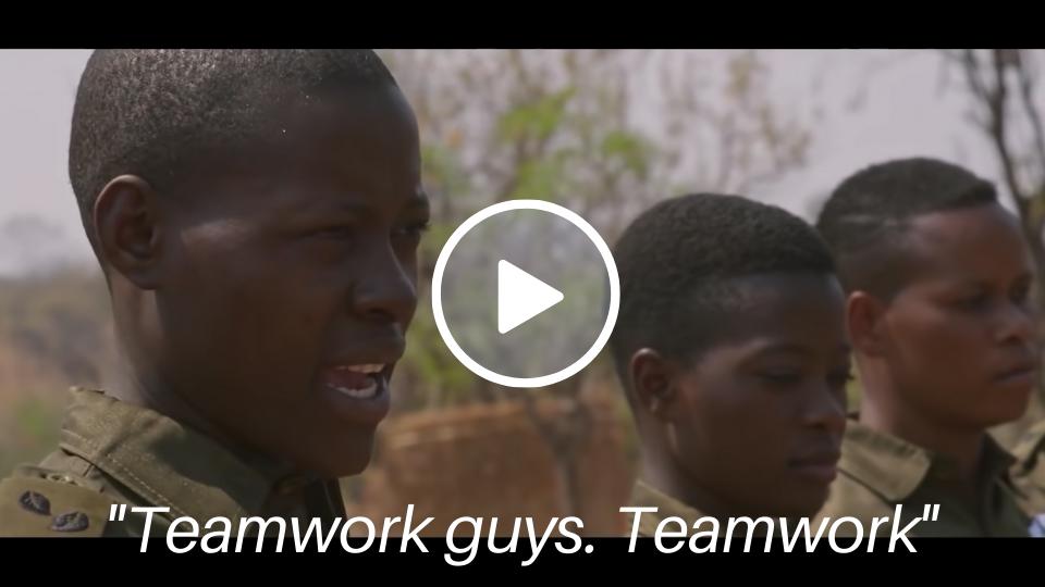 Teamwork for training