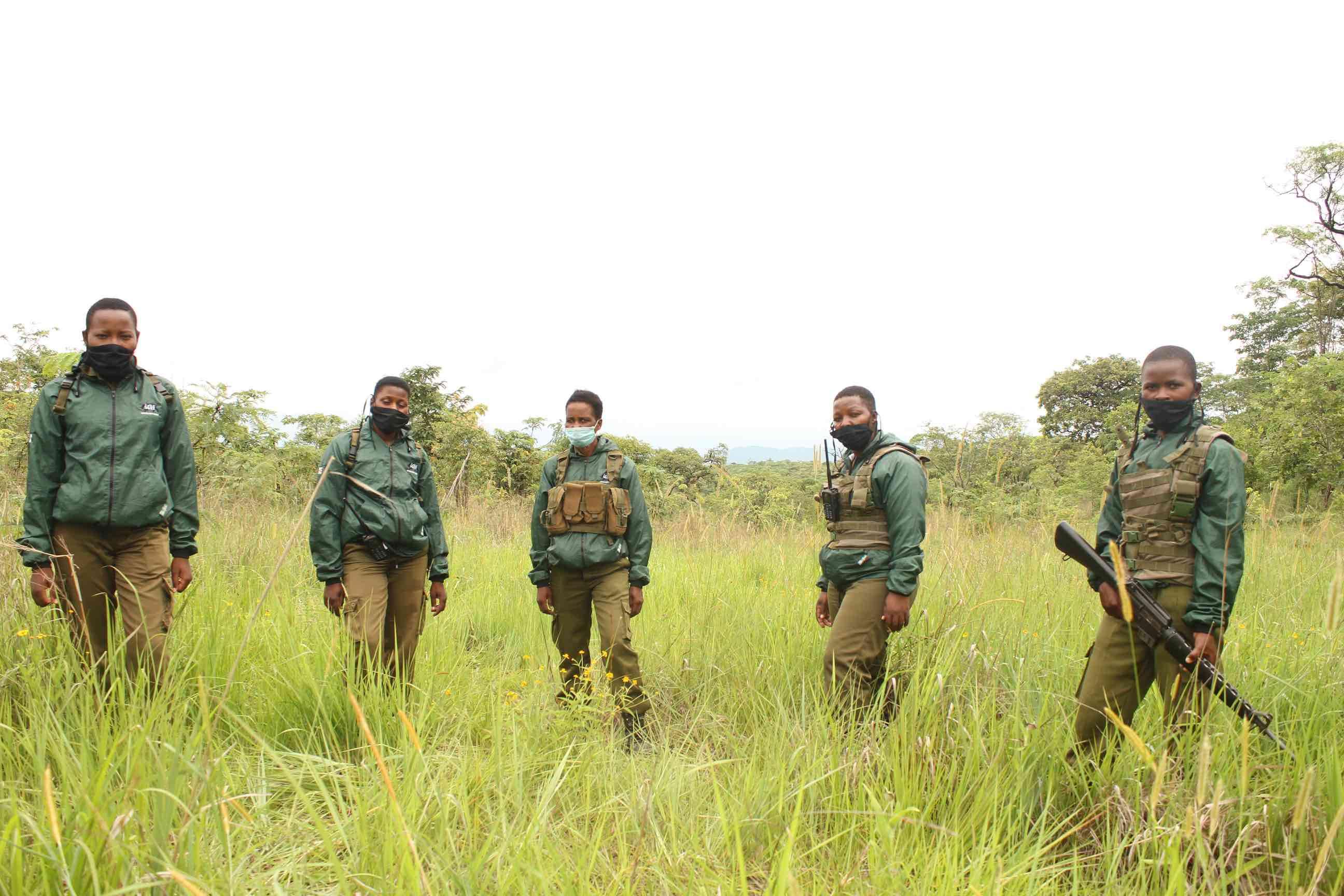 The Akashinga rangers on patrol in Phundundu wildlife area this week