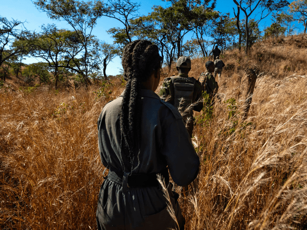 Unbreakable: Females Fighting Poaching – A Study on Gender Impact in Decreasing Corruption within Anti-Poaching Units in Africa