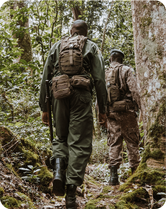 Lead Rangers through forest