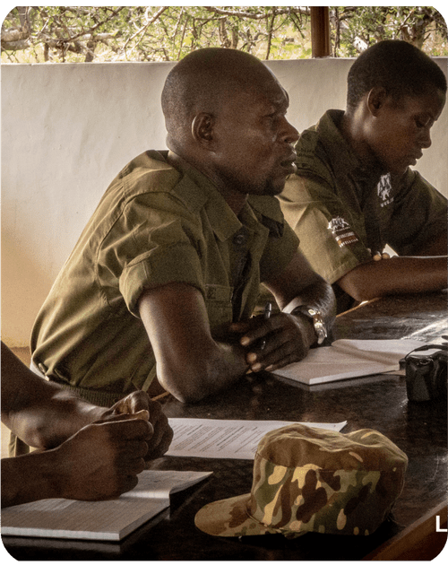 Lead Rangers studying