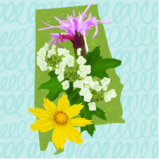 Illustrated graphic of the state of Alabama shape filled with wildflowers