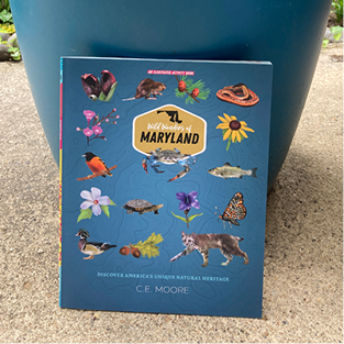 Showing the cover of the Wild Wonders of Maryland book against a blue planter.