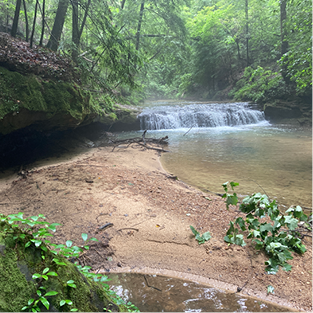 After a recent rain, a small cascade flows next to a sandy area of the creek.