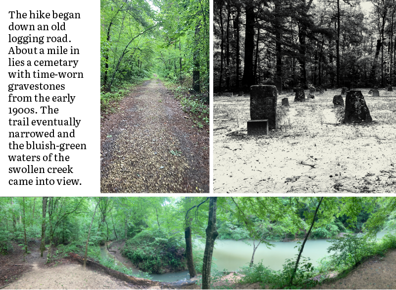 The hike began down an old logging road. About a mile in lies a cemetary with time-worn gravestones from the early 1900s. The trail eventually narrowed and the bluish-green waters of the swollen creek came into view.