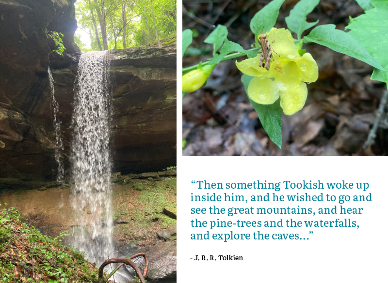 """""""Then something Tookish woke up inside him, and he wished to go and see the great mountains, and hear the pine-trees and the waterfalls, and explore the caves...""""  - J. R. R. Tolkien"""