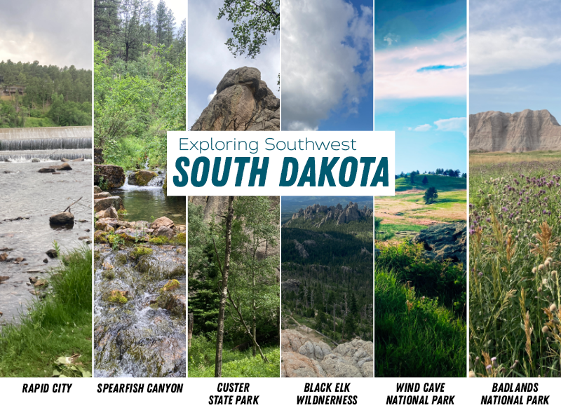 Image 1: A small dam flows in Rapid City with trees in the background; Image 2: a flowing creek in Spearfish Canyon;  Image 3: A pine tree stands in front of a unique rock formation; Image 4: Panoramic view from Black Elk Peak; Image 5: lush prairie with a few scattered trees and a blue sky; Image 6: Wildflowers set against a rock formation in the Badlands