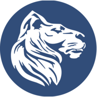 Löwenstark Digital Solutions