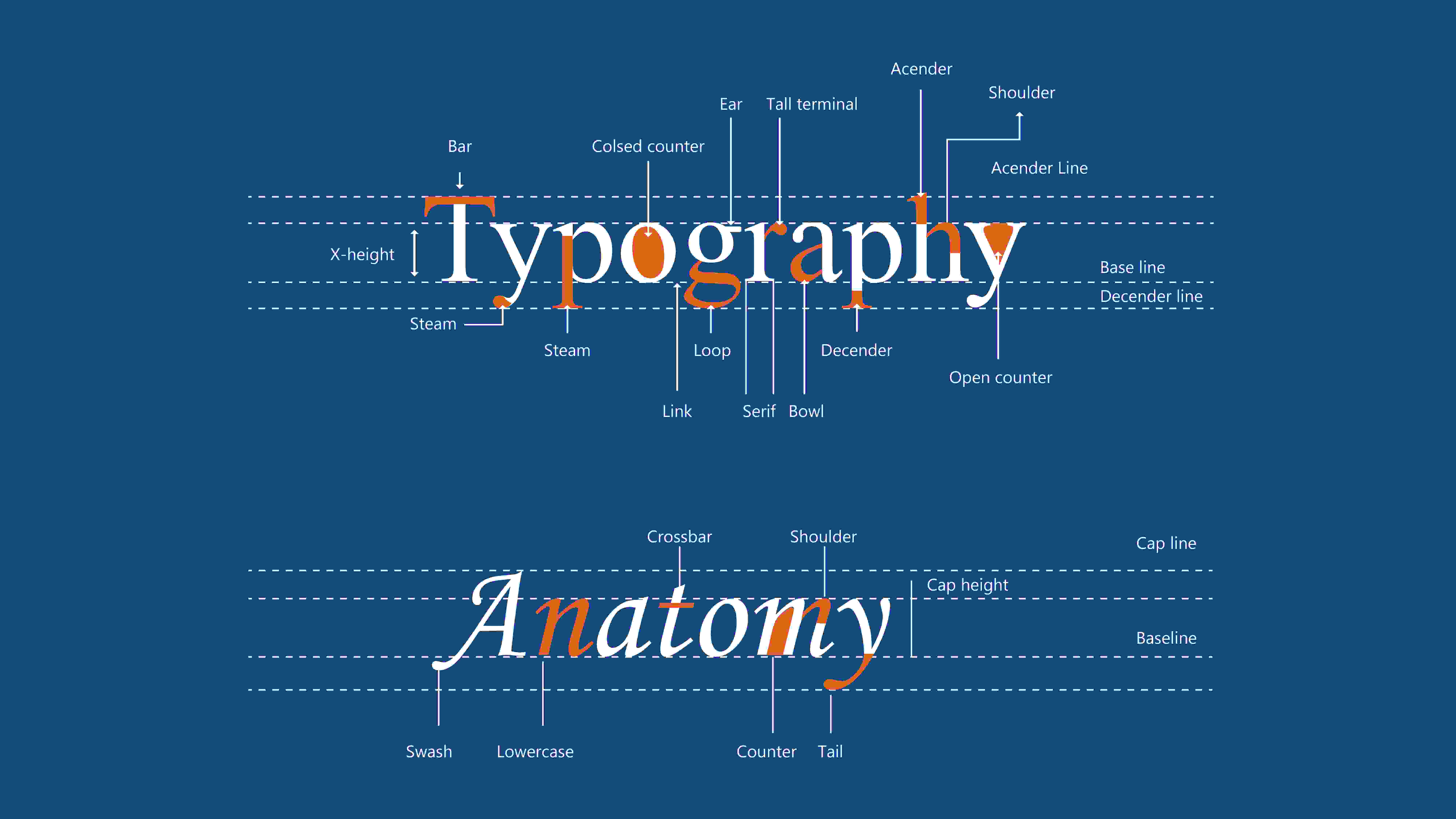constituent of visual identity-typography