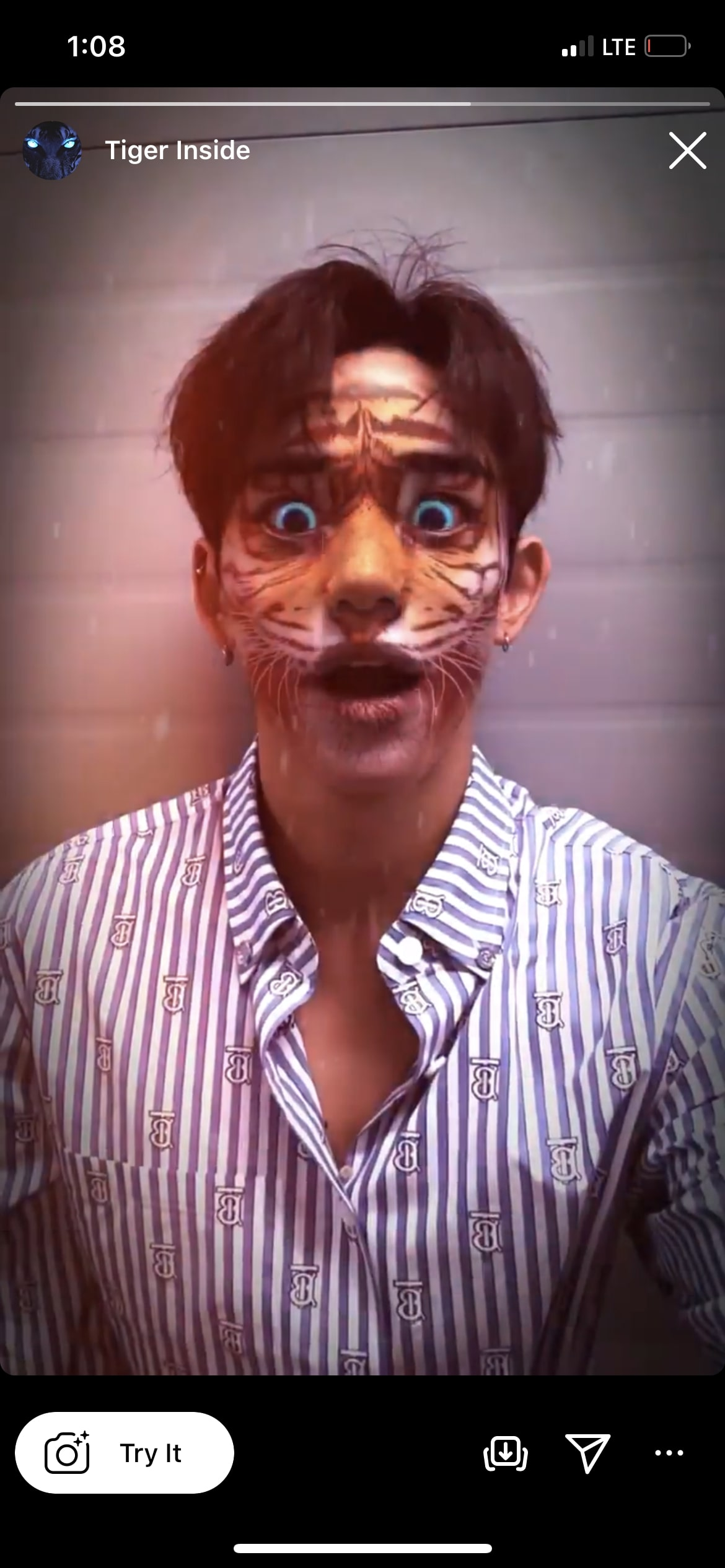 Animal Face Filters