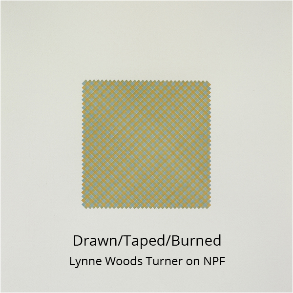 Drawn Taped Burned - Lynne Woods Turner on NPF