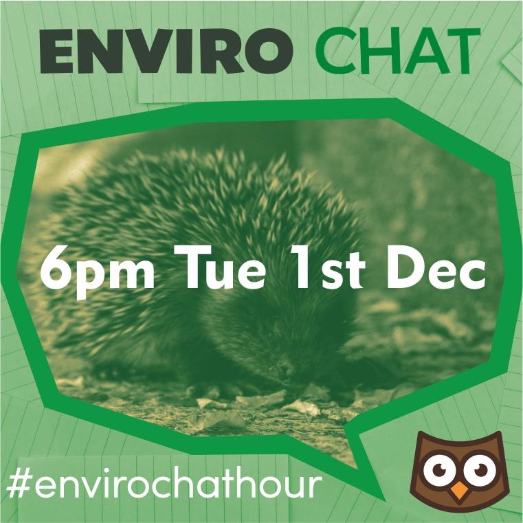 HEDGEHOG CAMPAIGN - 1st Dec 6pm is Hedgehog Hour!