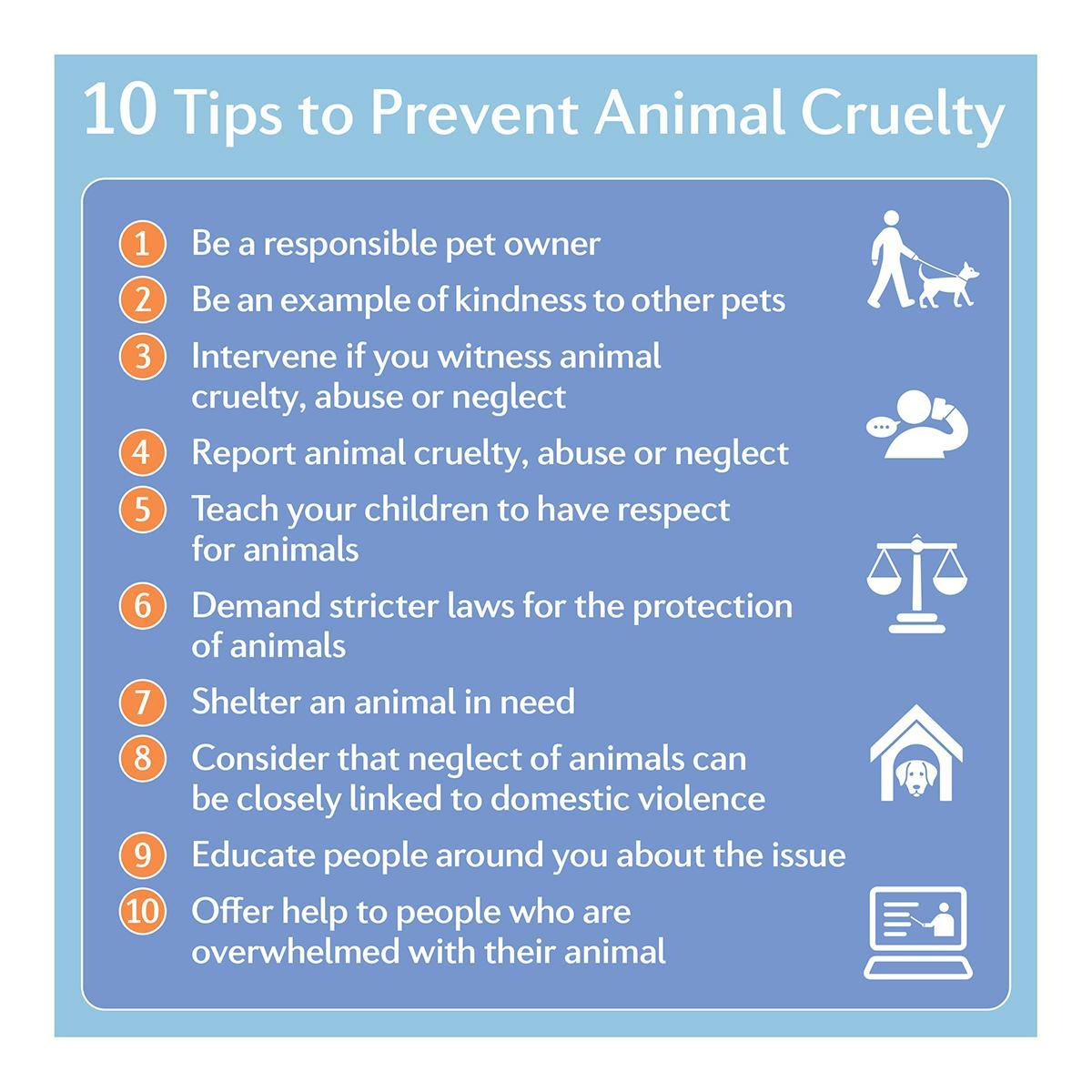 #LIVEKINDER - Prevent Animal Cruelty