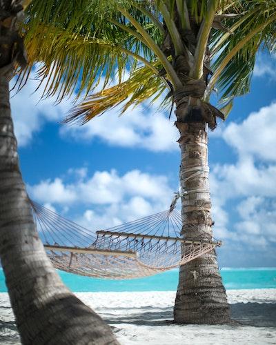 Hammock in Caribbean