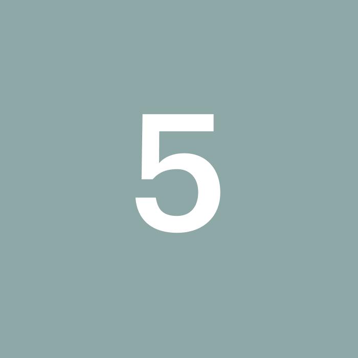 5. Overdragelse