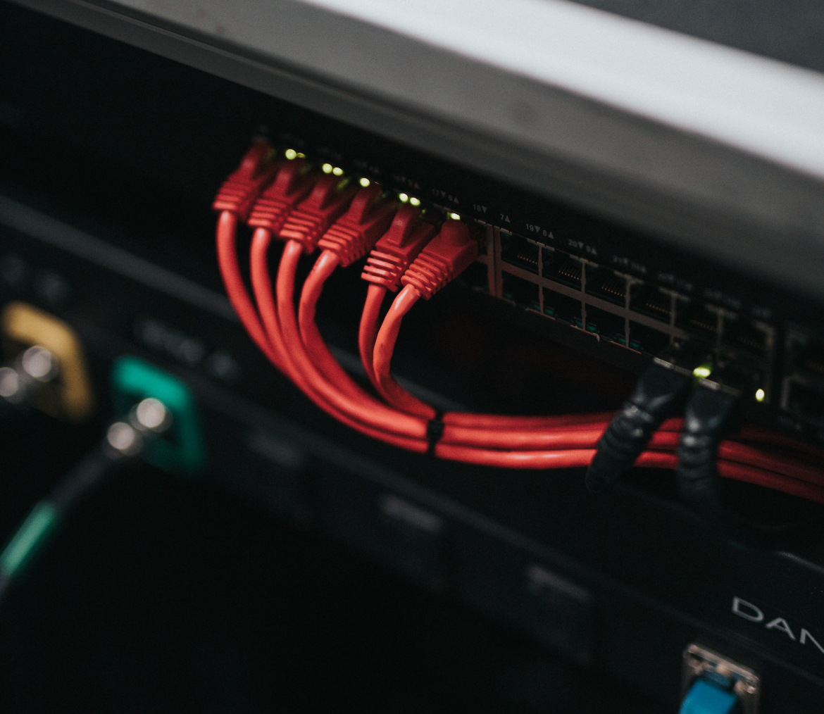 picture of ethernet cables coming out of a server