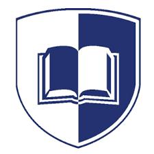 The Medic Portal logo