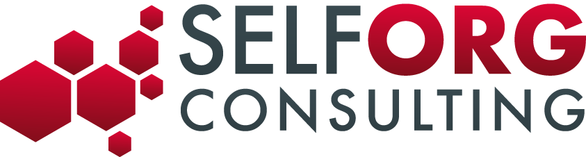 SelfOrg Consulting logo