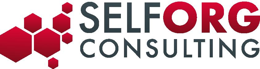 Logo de SelfOrg Consulting