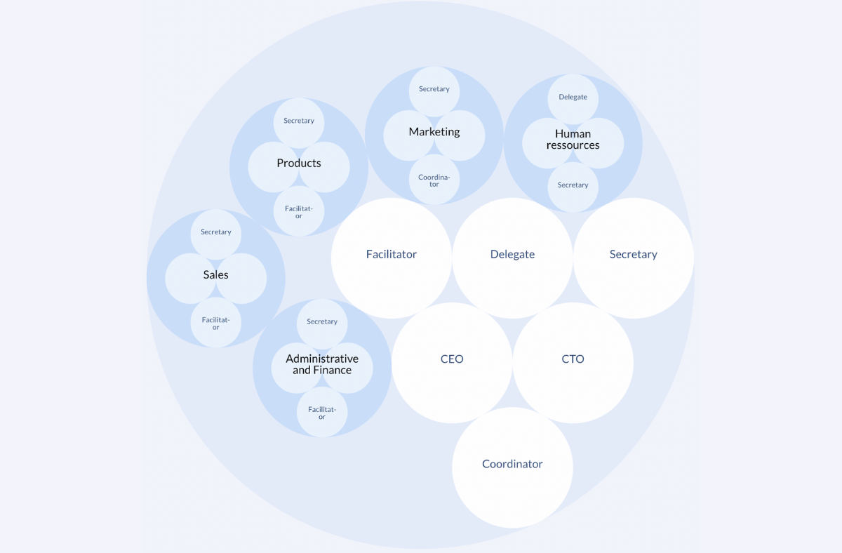 Example of a sociocratic org chart
