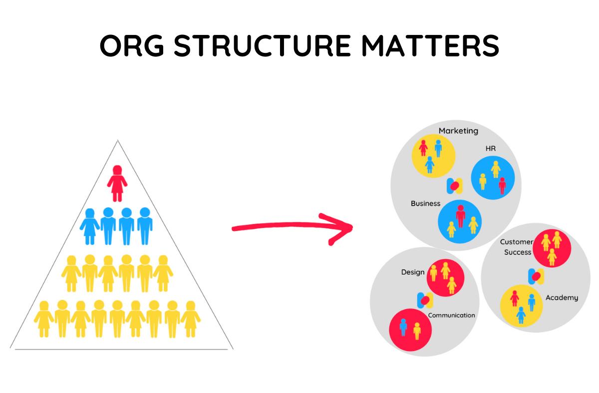 hierarchical organization vs flat organization