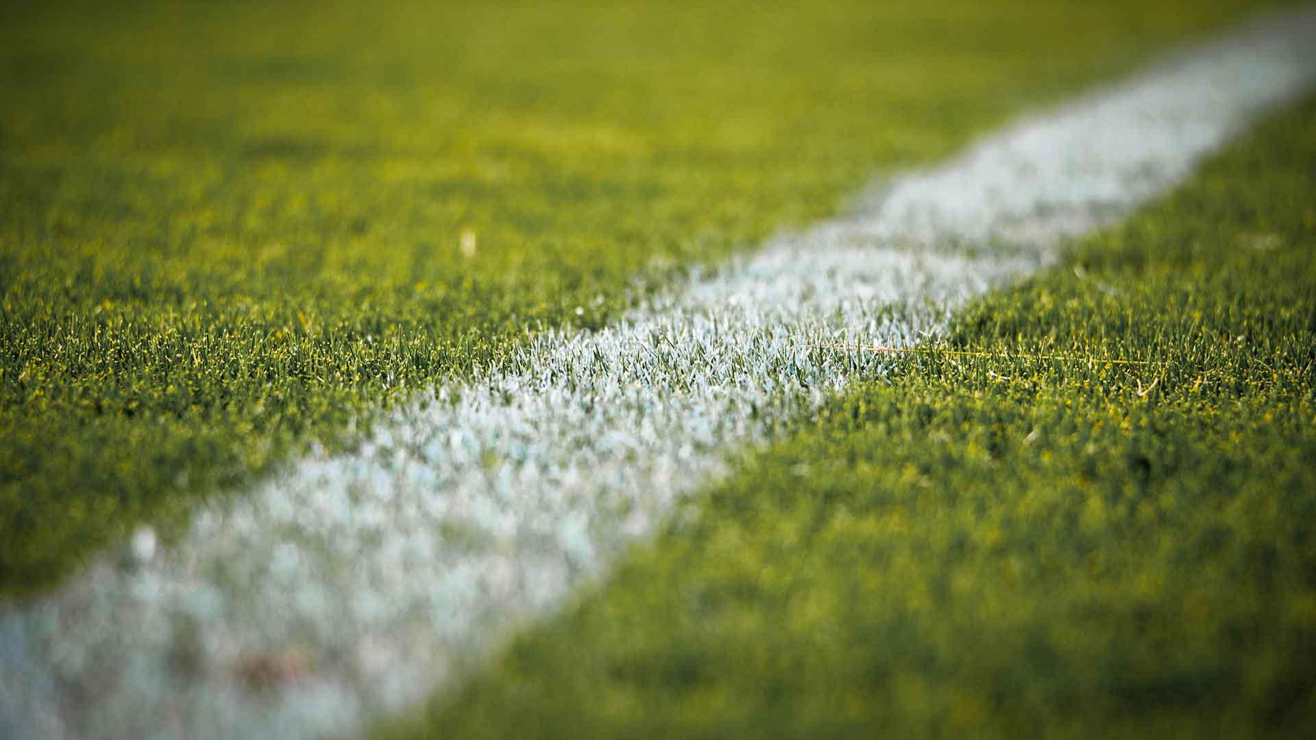 Stadionrasen Torline weiß Nahaufnahme