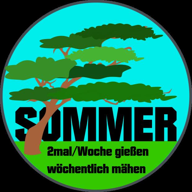 Rasenkalender Monat Sommer