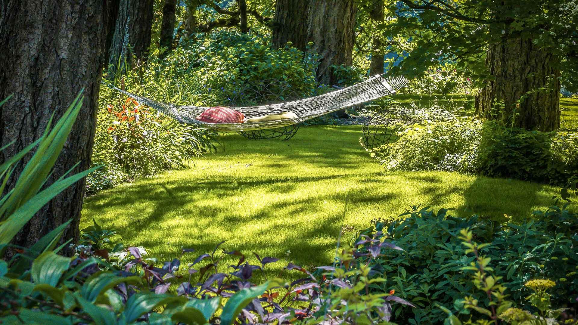Grüner Garten mit Rollrasen im Schatten mit Hängematte