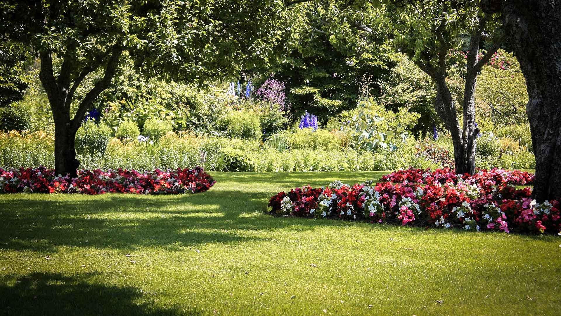 Blumengarten mit Rasen und Bäumen