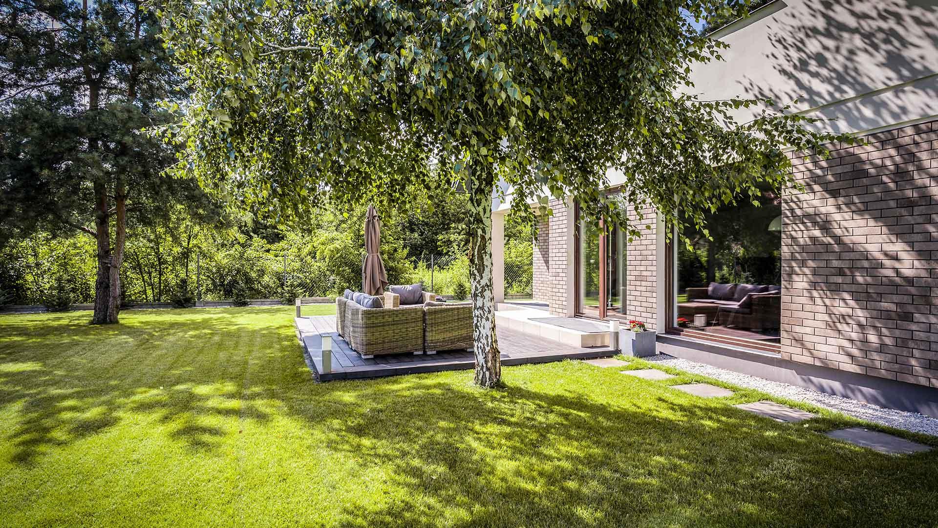 grüner moderner Garten mit Terasse