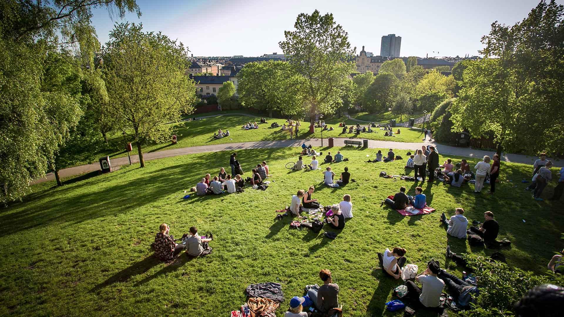 Freunde in Nürnberg im Park