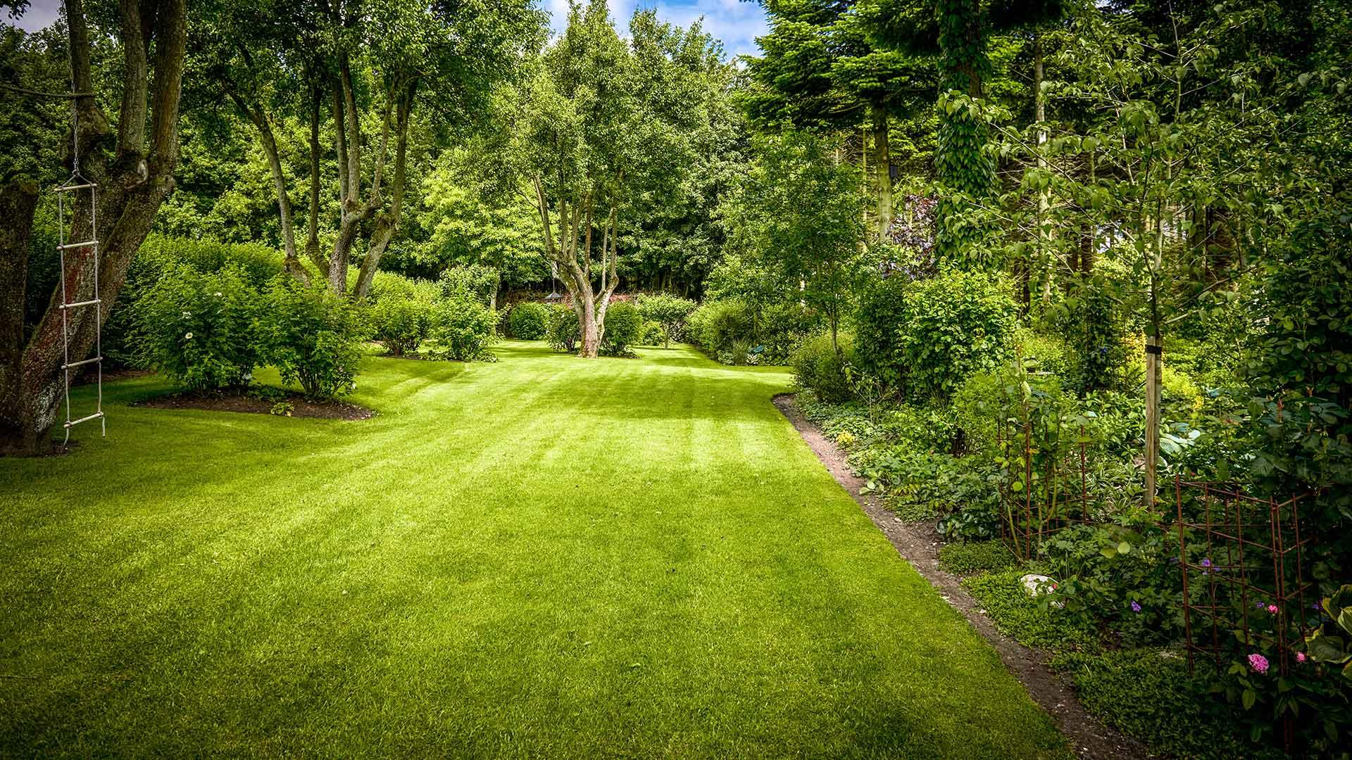 Garten mit Rollrasen