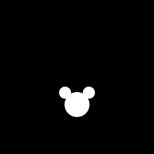 Transporte para parques da Disney