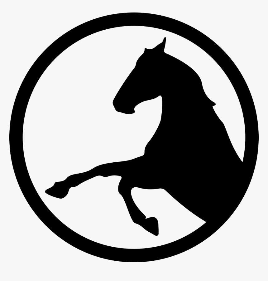 Parque de Cavalos