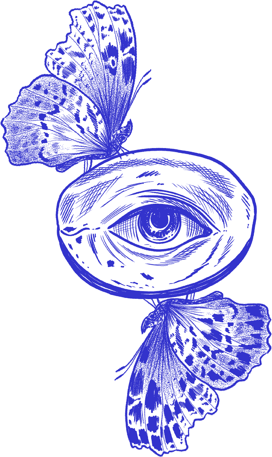 Florian Hirnhack Drawing of Eye with Butterflies