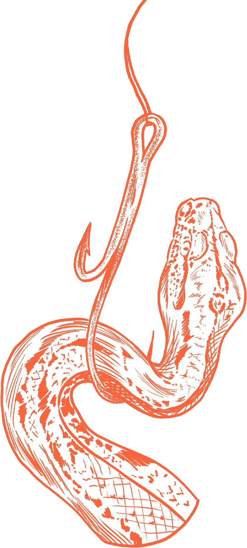 Florian Hirnhack Drawing of Snake on a Hook