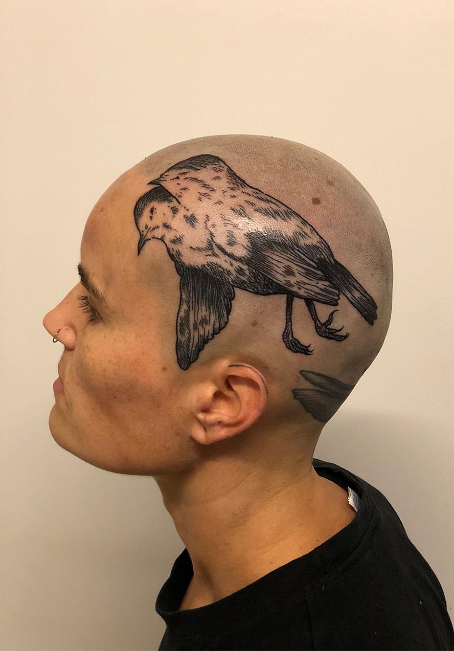 Head tattoo of a Bird
