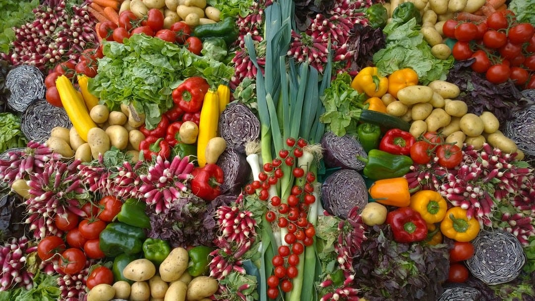 Balanced Diet for Indian-The Daily9