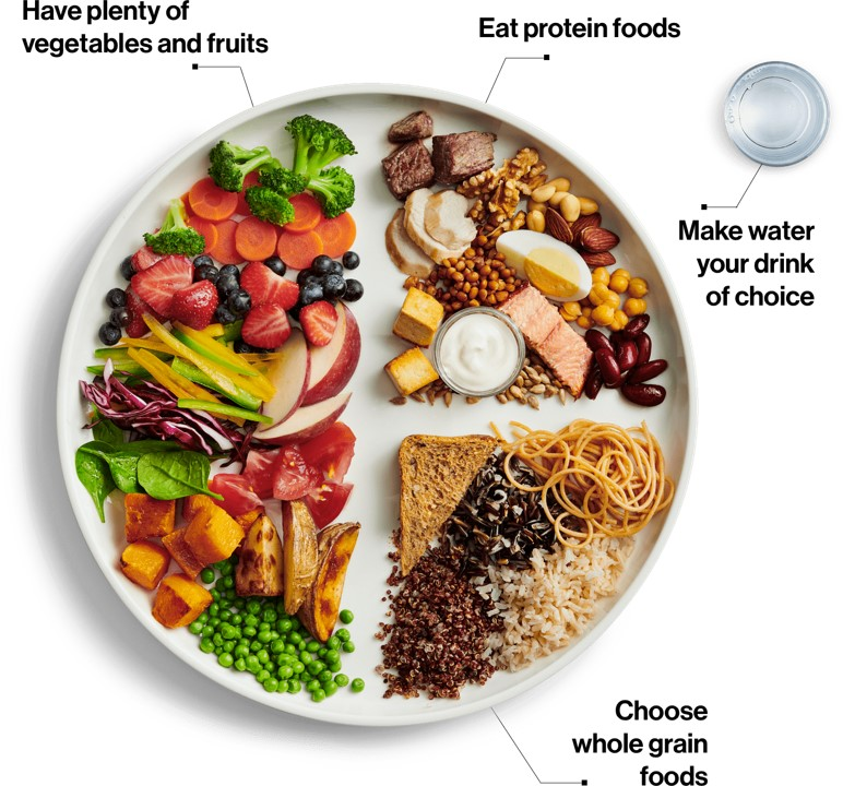 Healthy Diet For Indian-The Daily9