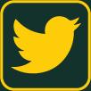 Header Twitter Icon