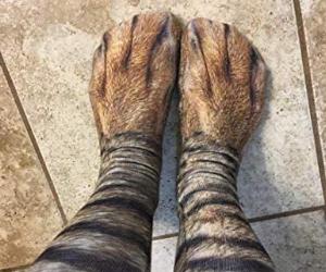 Cat Paws Socks